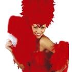 Spalvu vēdeklis ar sarkanām spalvām